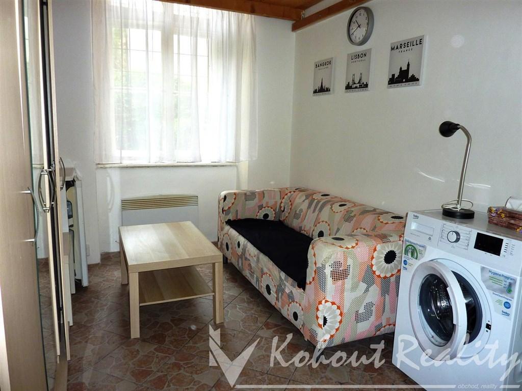 Malá garsoniera 18m2+patro na spaní (WC na chodbě pouze pro byt) P2, Vinohrady
